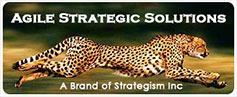 Agile Strategic Solutions